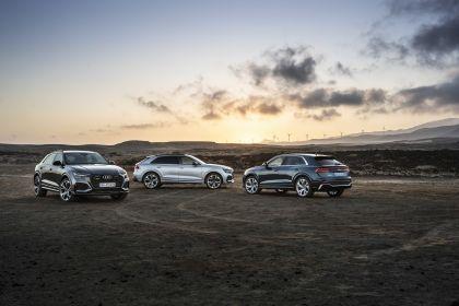 2020 Audi RS Q8 194