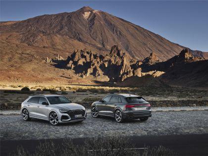 2020 Audi RS Q8 195