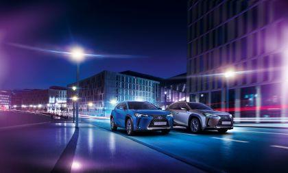2020 Lexus UX 300e 6