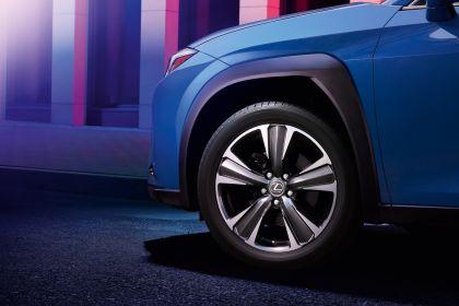 2020 Lexus UX 300e 14