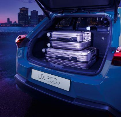 2020 Lexus UX 300e 17