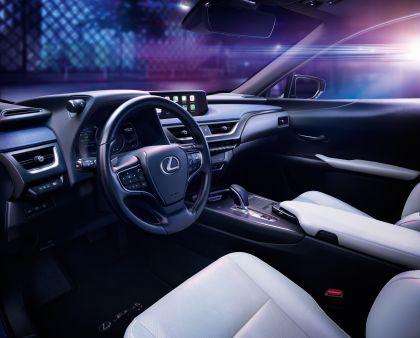 2020 Lexus UX 300e 18