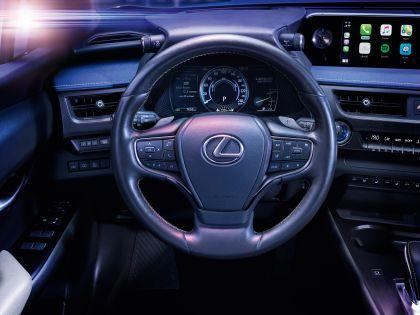 2020 Lexus UX 300e 19