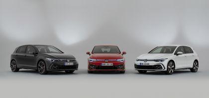 2020 Volkswagen Golf ( VIII ) GTE 9