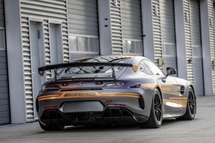 2020 Mercedes-AMG GT4 6