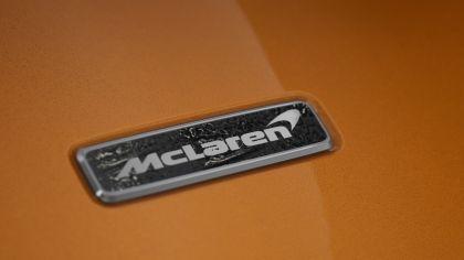 2020 McLaren Elva M6A Theme by MSO 9