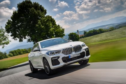 2020 BMW X6 ( G06 ) xDrive30d 23