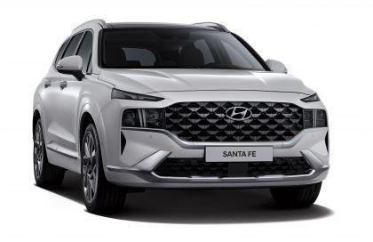 2021 Hyundai Santa Fe 23