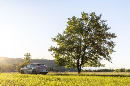 2020 Porsche Cayenne GTS coupé 81