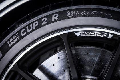 2020 Mercedes-AMG GT Black Series 87