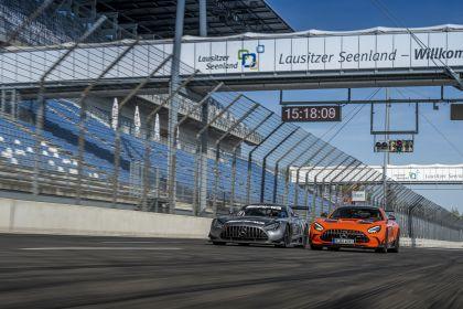 2020 Mercedes-AMG GT Black Series 122