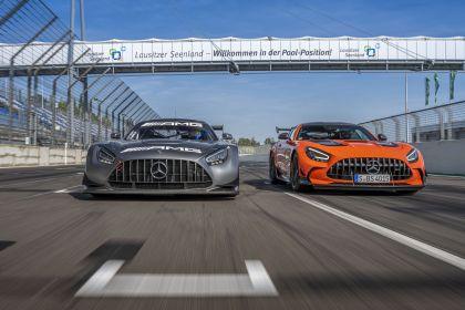 2020 Mercedes-AMG GT Black Series 123