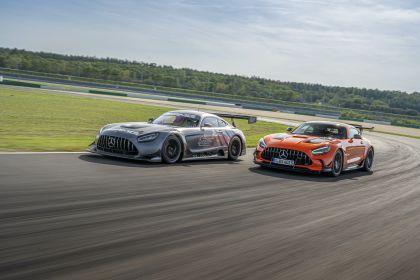 2020 Mercedes-AMG GT Black Series 126