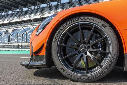 2020 Mercedes-AMG GT Black Series 172