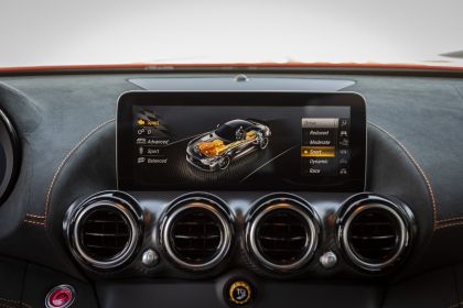 2020 Mercedes-AMG GT Black Series 208