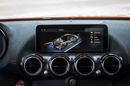 2020 Mercedes-AMG GT Black Series 209