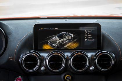 2020 Mercedes-AMG GT Black Series 210