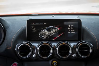 2020 Mercedes-AMG GT Black Series 212