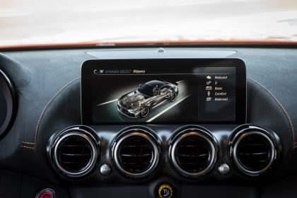 2020 Mercedes-AMG GT Black Series 213
