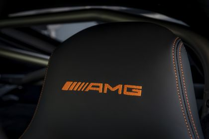 2020 Mercedes-AMG GT Black Series 214
