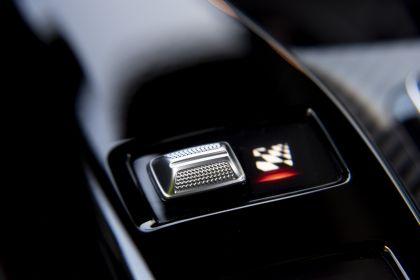 2020 Mercedes-AMG GT Black Series 217