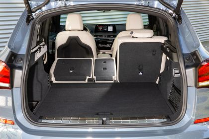 2021 BMW X1 ( F48 ) xDrive25e 41