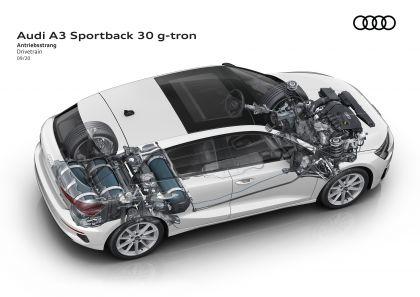 2021 Audi A3 Sportback 30 g-tron 17