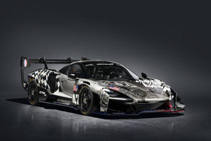 2020 McLaren Senna GTR LM 19