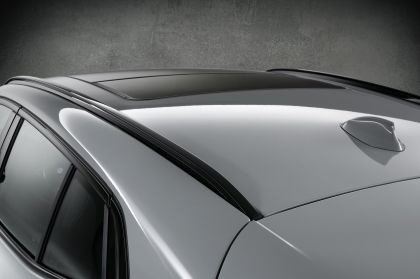 2020 BMW X2 ( F39 ) M Mesh Edition 10
