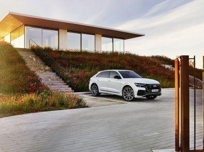 2021 Audi Q8 60 TFSI e quattro 10