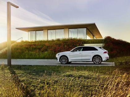 2021 Audi Q8 60 TFSI e quattro 15