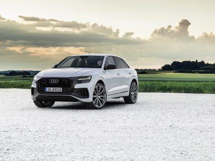 2021 Audi Q8 60 TFSI e quattro 17