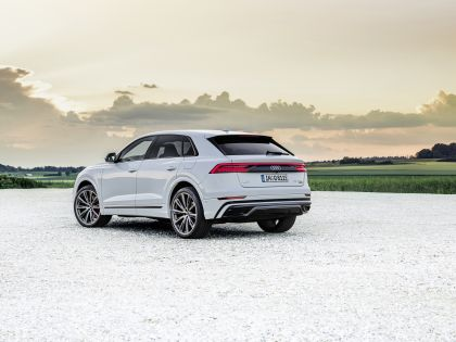 2021 Audi Q8 60 TFSI e quattro 19