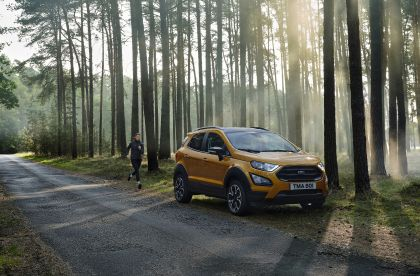 2020 Ford EcoSport Active 11