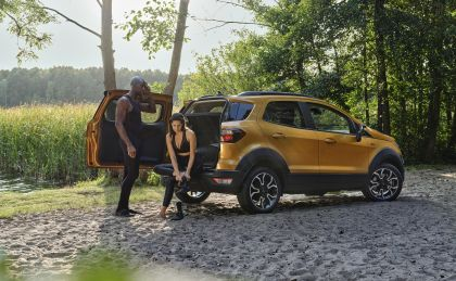2020 Ford EcoSport Active 13
