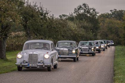 1954 Mercedes-Benz 220 ( W180 ) Ponton 9