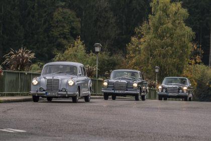 1954 Mercedes-Benz 220 ( W180 ) Ponton 12