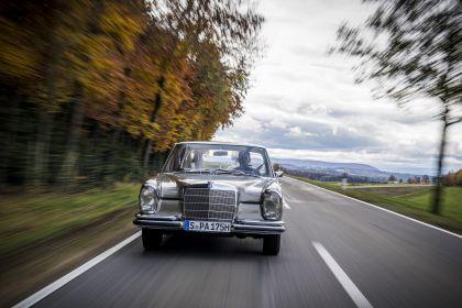 1965 Mercedes-Benz 250 SE ( W108 ) 15