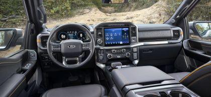 2021 Ford F-150 Tremor 20