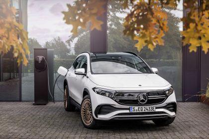 2021 Mercedes-Benz EQA 31