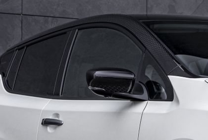 2021 Nissan Leaf10 10