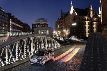 2022 Audi Q4 e-tron concept 34