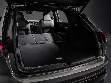 2022 Audi Q4 e-tron 109