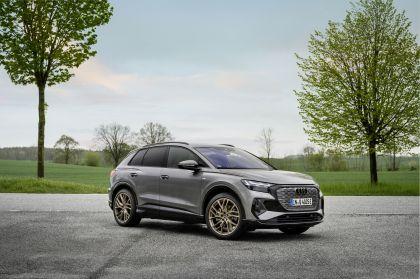 2022 Audi Q4 50 e-tron quattro Edition One 8