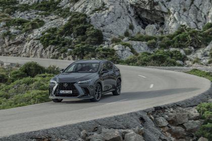 2022 Lexus NX 450h+ F Sport 74