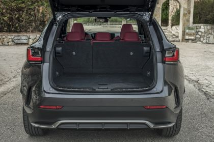 2022 Lexus NX 450h+ F Sport 87