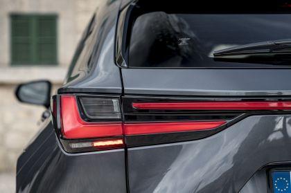 2022 Lexus NX 450h+ F Sport 96