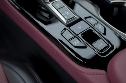 2022 Lexus NX 450h+ F Sport 117