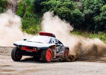 2022 Audi RS Q e-tron Dakar Rally 13