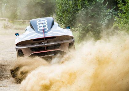 2022 Audi RS Q e-tron Dakar Rally 17